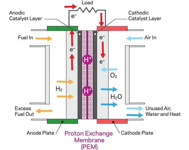 Hydrogen Fuel Cell with Proton Exhcange Membrane (PEM)